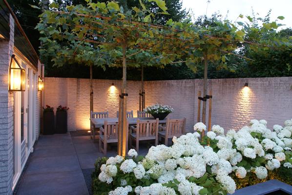 Gardens By Teus Timmer - Ontwerp, aanleg en onderhoud van ...